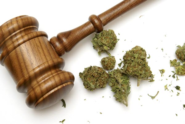 7 surprising health benefits of legal marijuana